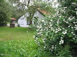 Noord-Oostzijde vanuit boomgaard