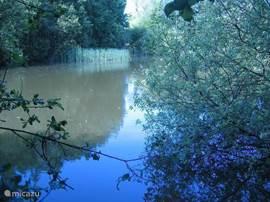 Meer aan Zuidzijde met een rijke hoeveelheid planten en vissen, ook heelijk om te zwemmen en te varen.