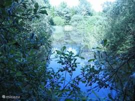 Meer Zuidzijde met een rijke hoeveelheid planten en vissen, ook heelijk om te zwemmen en te varen.