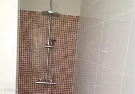 Walk in shower in de master bathroom.