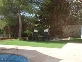 Aan de voet van het zwembad het gras waar je onder de boom de schaduw op kunt zoeken.