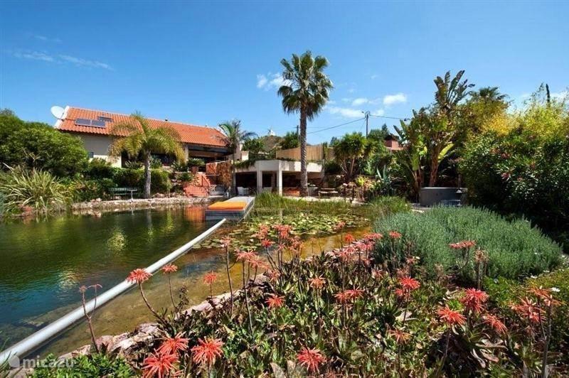 Vakantiehuis Portugal, Algarve, Silves - villa Quinta Dimalago