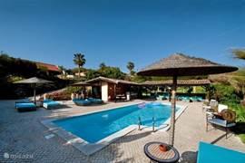 hete zwembad met speeltuin en gras en voorzien van eigen bar - warme douche en toilet