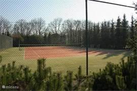 Tennisbaan. Alleen toegankelijk voor bewoners/huurders park.