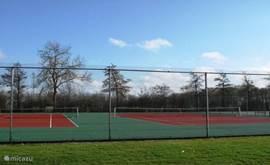 Ook kunt u tennissen op het park en zijn verschillende tennisbanen.