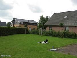 Omheinde tuin waar hond en kinderen kunnen spelen.