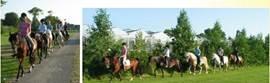 U kunt in de nabije omgeving paardrijden. Onze beheerster heeft een eigen manege. Laat de kids eens een les nemen.