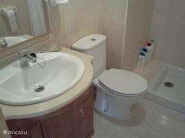 Deze badkamer heeft een instap douche. Dus u beschikt over een bad en een losse douche. Fijn voor de wat oudere gasten onder ons. Verder een toilet en wastafel met onderkast en grote spiegel.