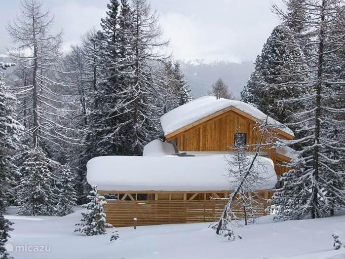 Vakantiehuis Oostenrijk, Karinthië, Turracher Höhe Chalet Haus Igor Turracher Höhe