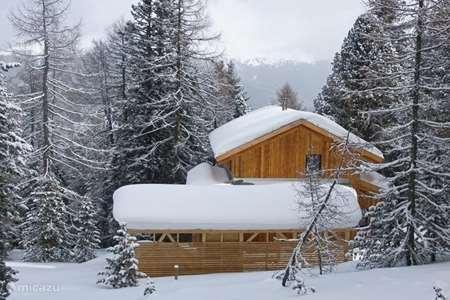 Vakantiehuis Oostenrijk, Karinthië, Turracher Höhe – chalet Haus Igor Turracher Höhe