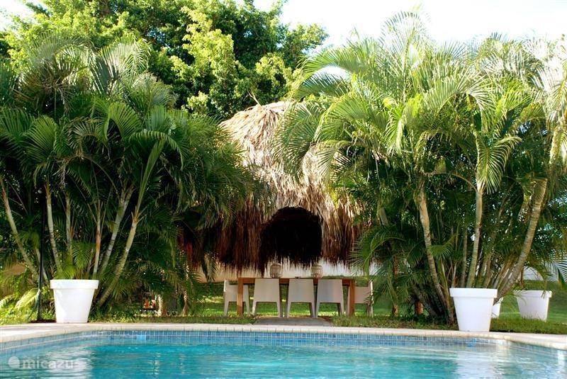 Tropenvilla in julianadorp curacao midden huren micazu for Groot rond zwembad