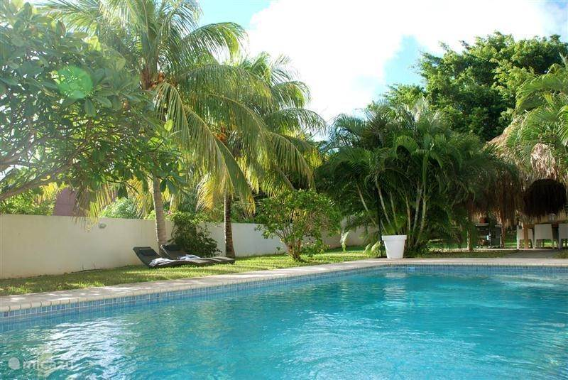 Vacation rental Curaçao, Curacao-Middle, Julianadorp Villa Tropenvilla