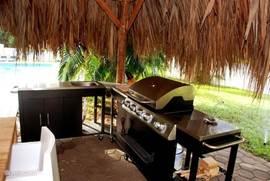 Buitenkeuken met gas BBQ, extra pit, spoelbak en werkblad.