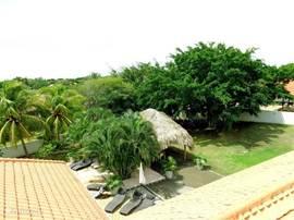 Tuin vanaf het dak bezien