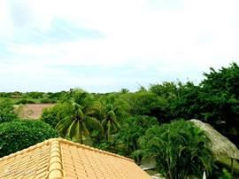 De tropenvilla ligt in het groene Julianadorp