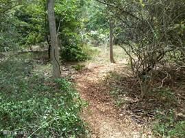 Een pad door de grote wilde tuin leidt naar het strand +/- 80 meter verder.
