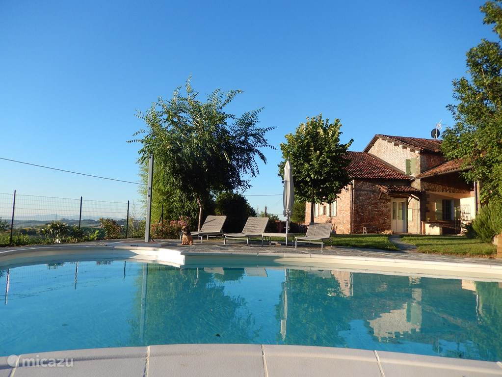 zwembad en achterkant huis