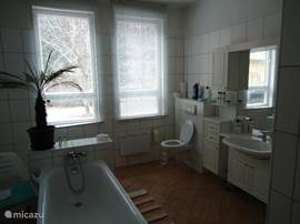 Bathroom with bath, shower, sink and toilet. Situated on the groundfloor.