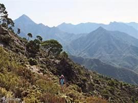 Wandelen in de bergen, in de omgeving van Cómpeta.