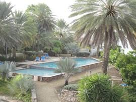 Het uitzicht vanaf de riante porch over de tuin en het zwembad van het resort.