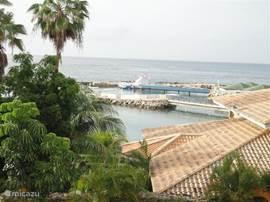 Het uitzicht vanaf de riante porch over de lagune, het Seaquarium waar u bij gelegenheid de dolfijnen uit het water kunt zien springen en de blauwe Caribische zee.