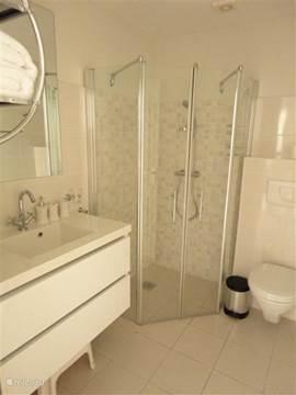 Badkamer, aangrenzend aan Second Bedroom met douche, toilet, wastafel en hotelfohn.