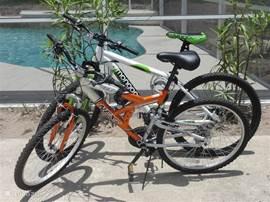 2 fietsen tot uw beschikking