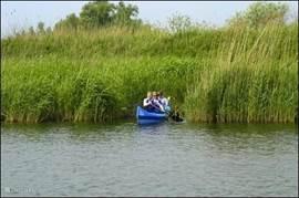 Zelf de Biesbosch verkennen met een kajak.