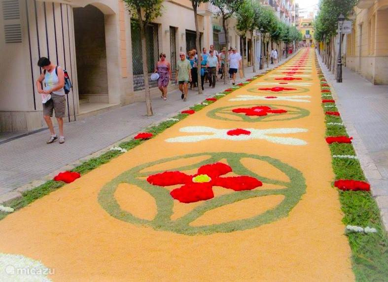 Corpus Christie. Het jaarlijkse bloemenfestival.