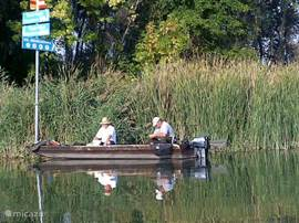 In the area there are plenty of fish options. A motorboat and rods can be hired at Puszta Eldorado.
