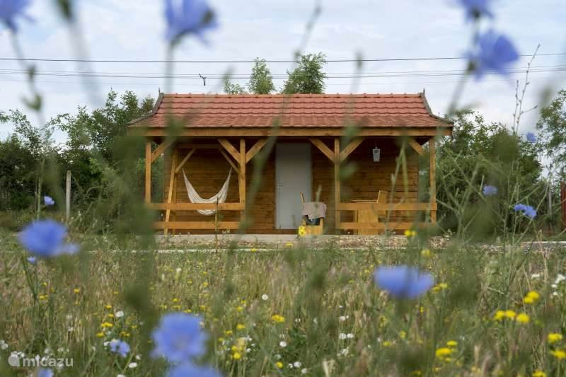 The orchard is a Puszta cabin. This is designed for 2 persons. Bedroom, kitchen and bathroom inside. Covered terrace and private garden.