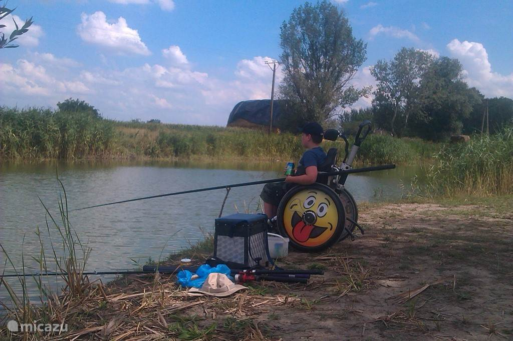 The park is a pond that you can use. Rods and other fishing tackle at Puszta Eldorado for rent.