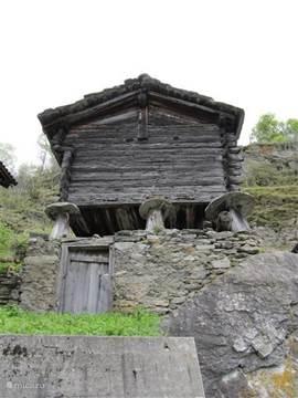 De oudste spycher van het dorp circa 400 jaar oud. Deze grenst aan ons terras bij de ingang van het huis.