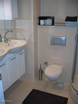 De badkamer op de 1e etage met douche, toilet en wasmeubel.