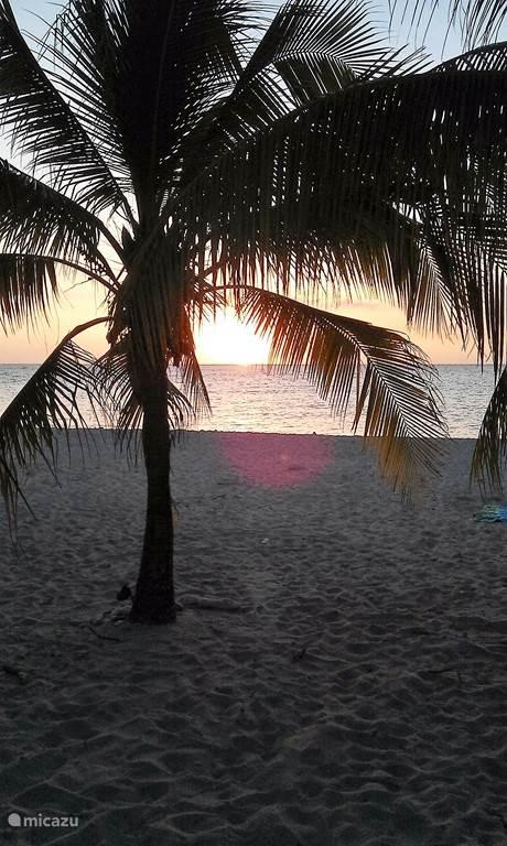 Beleef een  prachtige zonsondergang op Caribisch Nederland