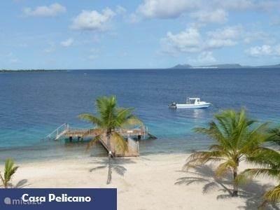 Algemene informatie over Bonaire