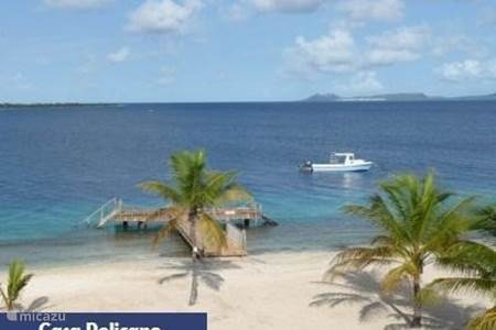 General information about Bonaire
