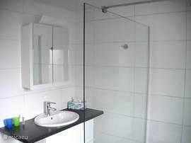 Badkamer op de begane grond met inloopdouche.