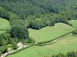 Natuurschoon, geen buren en alleen het geluid van vogels. Kortom: Gite Le Verne is helemaal vrij gelegen in de natuur van Nationaal Parc du Morvan.