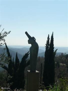 uitzicht vanaf de 'boventuin', met Afrikaanse schone