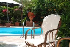 Het ruime zwembad omgeven door de paradijselijke tuin met citrusbomen