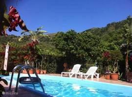 Het zwembad met buitendouche, ligstoelen en zitjes onder de bomen