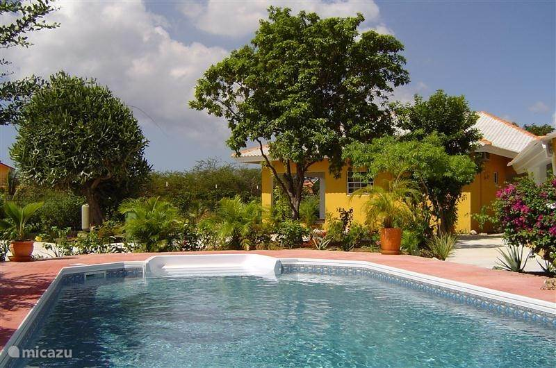 Vacation rental Curacao, Curacao-Middle, Julianadorp - studio Annidas appartementen