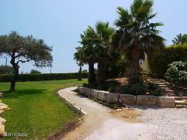 Ingang van de tuin gezien vanaf de oprijlaan. De typisch Portugese bomen en palmen heten u welkom.   Rechts ziet u het stenen pad dat wij de artiesteningang noemen: u loopt direct naar het zwembad en terras.