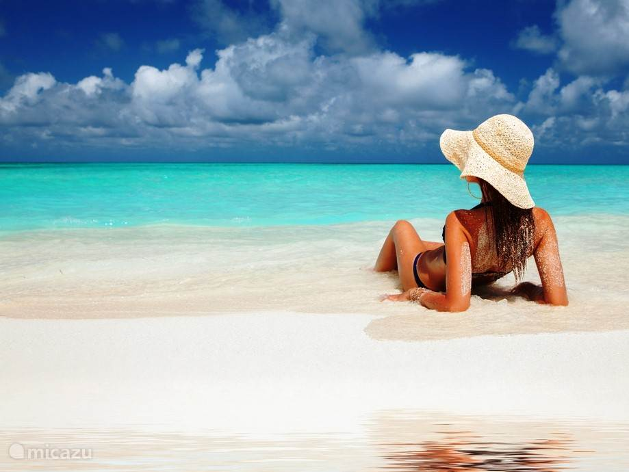 Dichtbij zee. Bijna altijd zonnig en aangenaam !!!