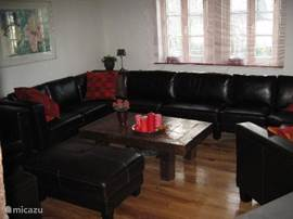 Leather seating area with stool, large hanging LCD TV, DVD player etc. All NL and Ger channels in HD quality. Of course, free internet and free wood for the wood stove in the living room