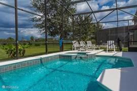 Het zwembad met jacuzzi en de heerlijke ligstoelen, nu met een 4e lig/zitstoel en klein tafeltje  erbij. Met uitzicht op de wetlands (natuurgebied).
