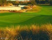 Er zijn volop mooie golfbanen in de regio. Ze zijn ook heel divers.