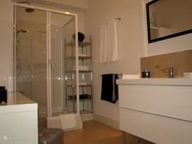 'Master-bathroom', ruime regen/massage-douche 120x80. Toilet en bidet (plus extra wastafel) bevinden zich in een aparte ruimte, gekoppeld aan deze badkamer.