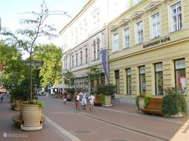 The towns in the area are very nice. This is Szeged.